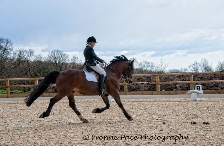 Advanced Medium Dressage