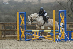 Show Jumping 2014