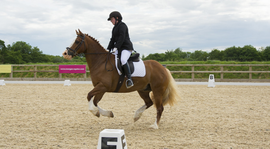Beacons Unaffiliated Dressage 28 June 2014 - Novice 24